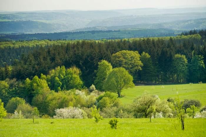Auf dem Schinderhannesweg präsentiert der Bahntrassenradweg immer wieder Panoramablicke über die Landschaft.