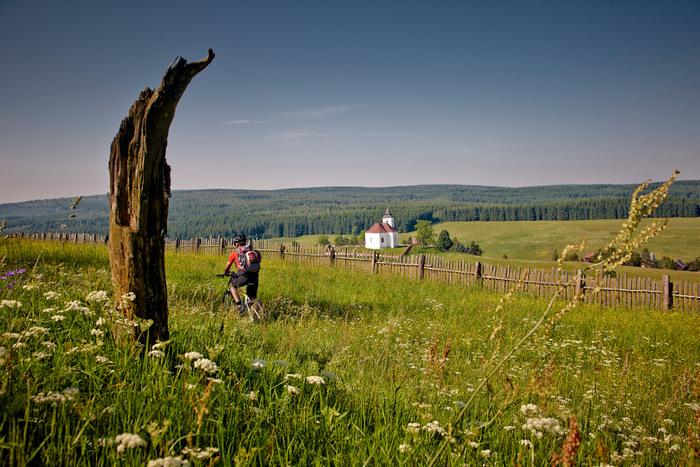 Wunderschöner Ausblick über die Hügel des Erzgebirges bei Kalek. Fotos: Tourismusverband Erzgebirge/R. Gaens
