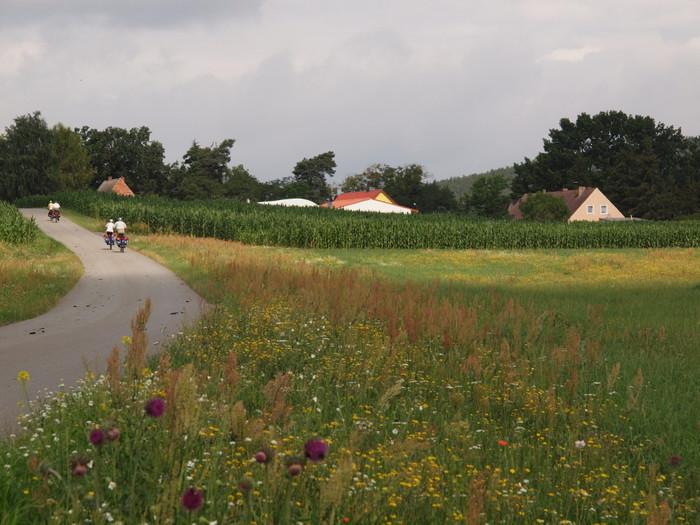 Die flache Landschaft des Havellandes.