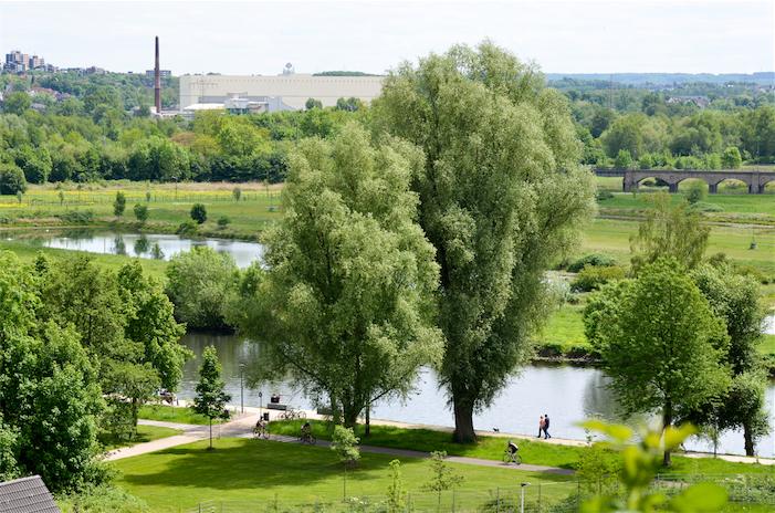 Blick vom Stadtgarten in Essen Steele. Bild: Hans Kothe